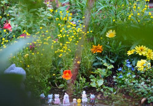 花の色*おはようのお庭から*